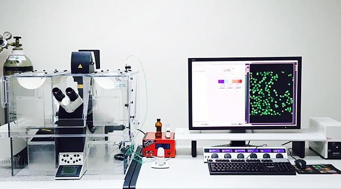 กล้อง CLSM : กล้องฟลูออเรสเซนต์สำหรับศึกษาสแกนภาพแบบ 3 มิติ ทางชีววิทยา