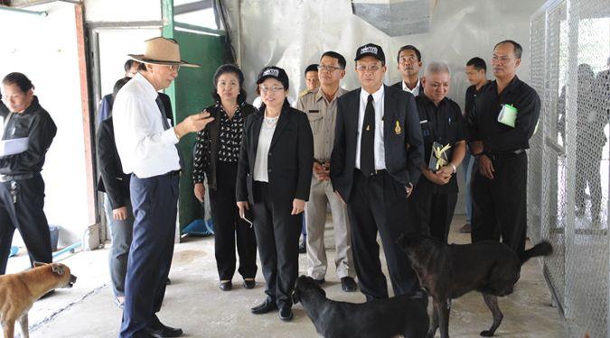 ผู้ตรวจราชการสำนักนายกรัฐมนตรี ลงพื้นที่ติดตามความก้าวหน้าโครงการสัตว์ปลอดโรค คนปลอดภัย จากโรคพิษสุนัขบ้าฯที่ม.วลัยลักษณ์