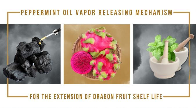 Emerging peppermint oils vapor releasing mechanism for dragon fruit storage