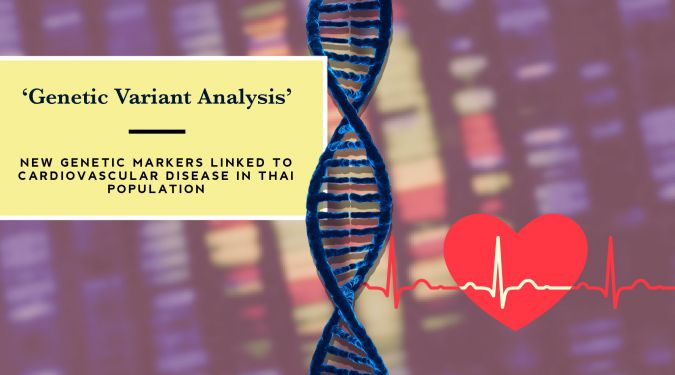Genetic Variant Analysis ‒ New genetic Markers linked to Cardiovascular Disease in Thai Population