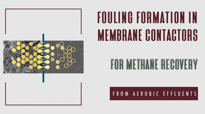 Fouling formation in membrane contactors for methane recovery from anaerobic effluents