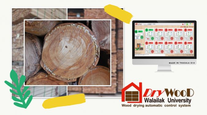 DryWooD – Wood drying automatic control system
