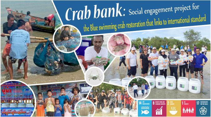 Crab Bank: Social engagement project for the blue swimming crab restoration that links to international standard