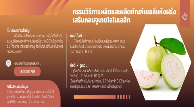 Production process and conjugated linoleic acids-rich guava gammy jelly product