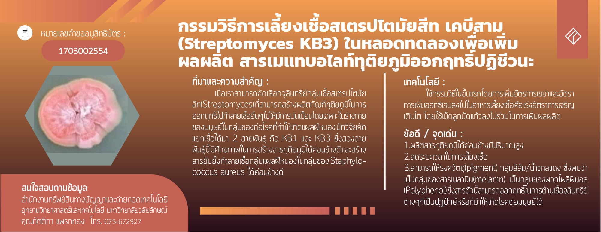 The process for in vitro culture Streptomycetes KB3 to increase productivity of secondary metabolites act as antibiotic active substance